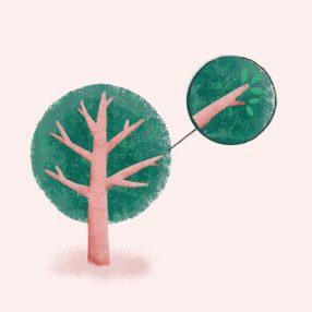 ninotchka.nl-tree-branch