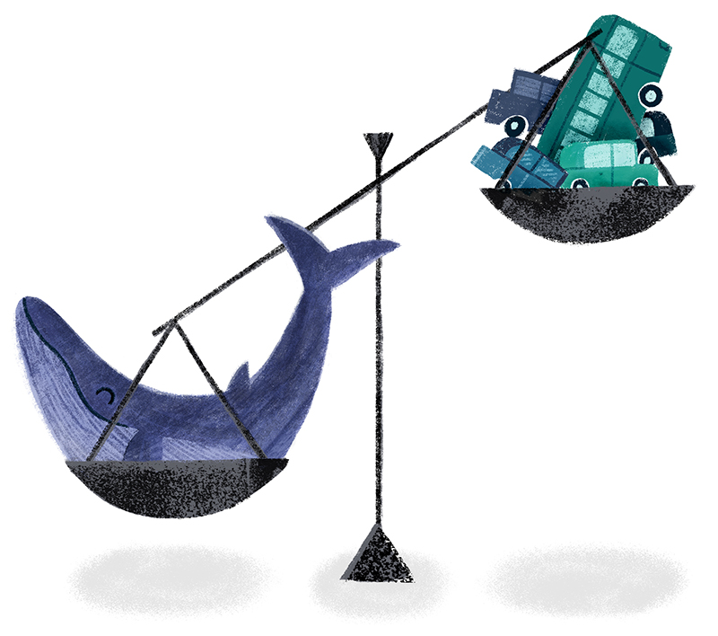 ninotchka.nl-gewicht walvis