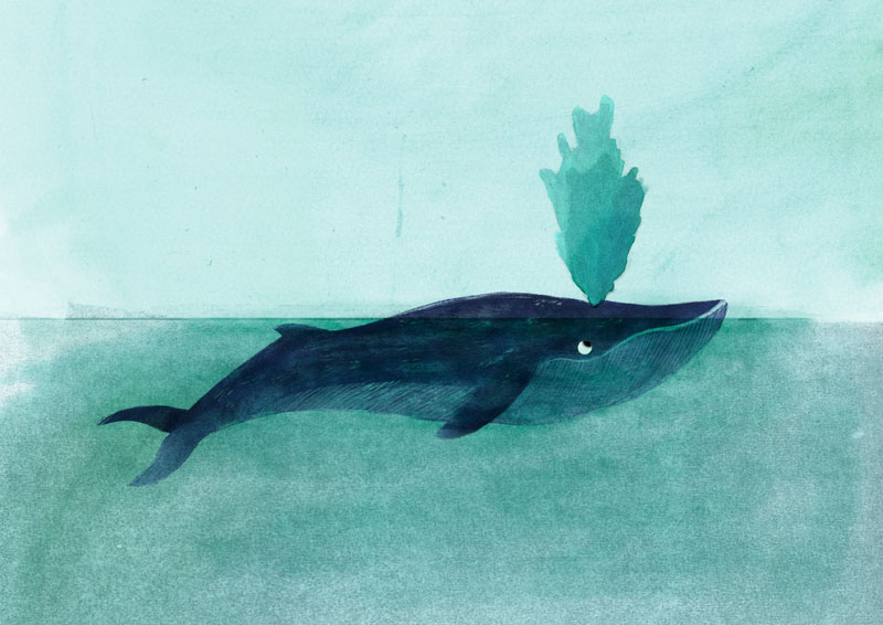 ninotchka.nl-de-blauwe-walvis-spread
