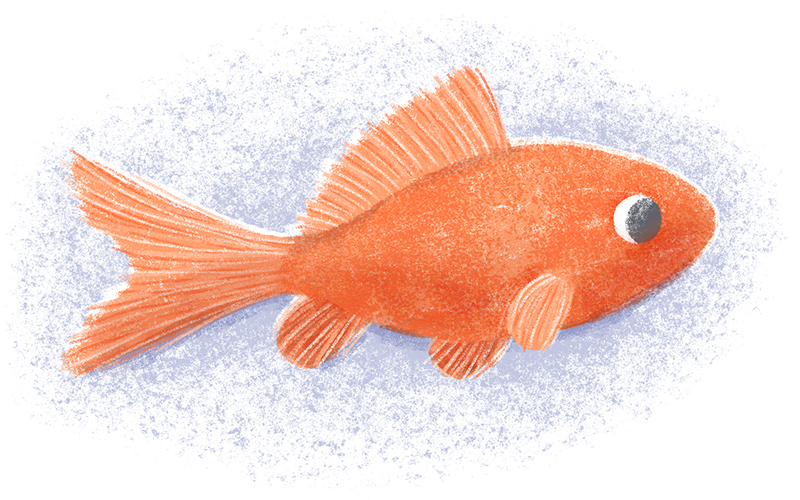 ninotchka.nl-goudvis